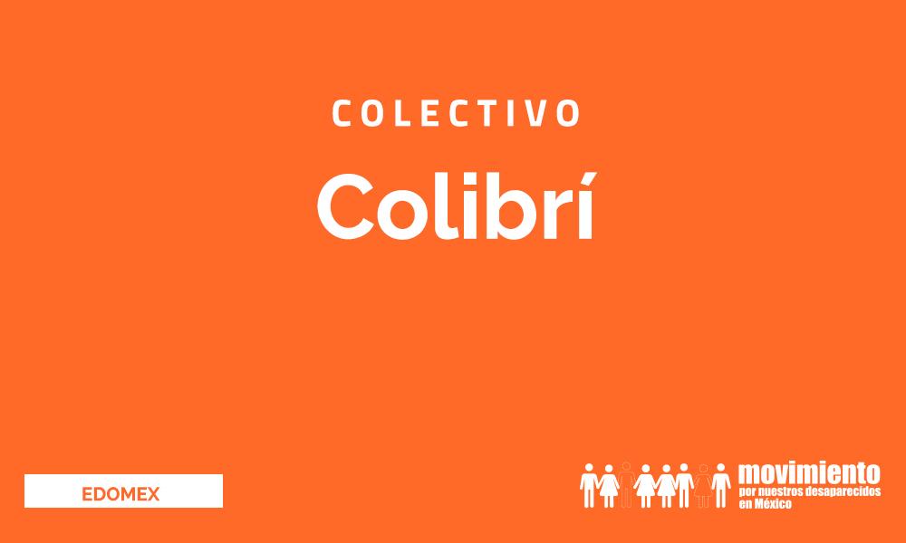 Colibri - Movimiento por nuestros desaparecidos en México